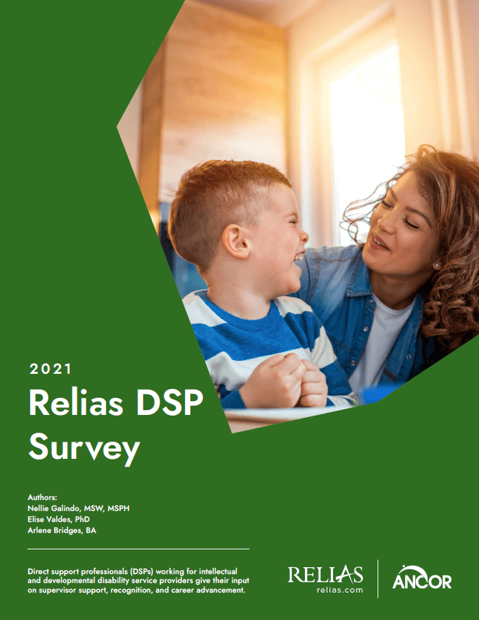 2021 DSP Survey Report cover